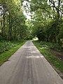 Stukje bos naast de A44.jpg