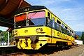 Svoboda nad Úpou, vlak společnosti Viamont Regio.jpg