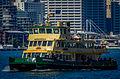 Sydney Ferry Borrowdale 1.jpg