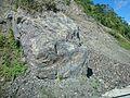 Talaingod-San Fernando Road - panoramio (87).jpg