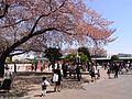 Tanashi-1.jpg