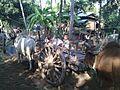 Taungoo, Myanmar (Burma) - panoramio (1).jpg