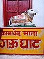 "The ""Kamdhenu"" of India.jpg"