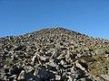 The 6m high and 30m diameter Carnguwch cairn - geograph.org.uk - 702600.jpg