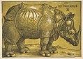 The Rhinoceros MET DP816483.jpg
