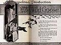 The Wild Goose (1921) - 3.jpg