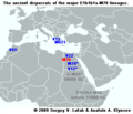 The ancient dispersals of the major E1b1b1a-M78 lineages.png
