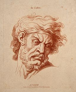 The face of a bearded man expressing anger. Etching in the c Wellcome V0009342