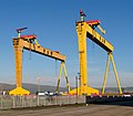 The most famous cranes in Belfast (7) - geograph.org.uk - 799767.jpg