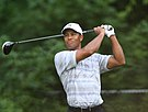 Tiger Woods -  Bild