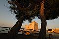 Tonara Riserva naturale di Vendicari - Creative Commons by gnuckx - panoramio (7).jpg