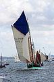 Tonnerres de Brest 2012 - Nebuleuse01.JPG