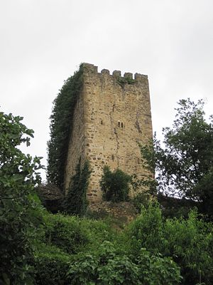 Defensive towers of Cantabria - Tower of Mogrovejo.