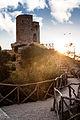 Torre de ses animes (7101712109).jpg