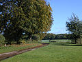 Track to Vines Farm - geograph.org.uk - 989391.jpg