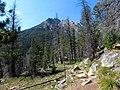 Trail to Lily Lake (14871635227).jpg