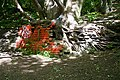 Tree and Bricks - geograph.org.uk - 1318293.jpg
