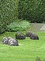 Tuinen van Mien Ruis - Dedemsvaart - 6326851347.jpg