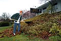 US Navy 040305-N-5274S-027 Storekeeper 1st Class Michael Faulk, stationed aboard the aircraft carrier USS Abraham Lincoln (CVN 72), rakes leaves at a local Salvation Army office in Everett, Wash.jpg