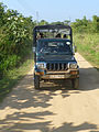 Uda Walawe National Park-Jeep.jpg