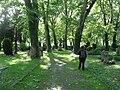 Unterer Nikolaifriedhof in Schwäbisch Hall, Blick nach W.jpg