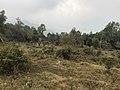 Upper Sittong, Darjeeling 09.jpg