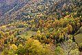Val Aran vall riu Joeu 8505-01.jpg