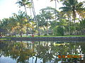 Vembanad Resort.jpg