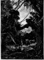 Verne - La Maison à vapeur, Hetzel, 1906, Ill. page 259.png