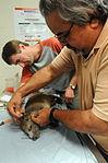 Veterinary Clinic GPS DVIDS282256.jpg
