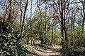Via degli Dei, Casalecchio di Reno, Parco della Chiusa 03.jpg