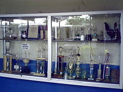 Wall Mounted Trophy Case