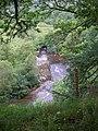 View down onto Afon Tawe - geograph.org.uk - 519399.jpg