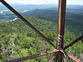 View from a fire tower.jpg