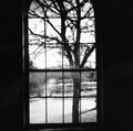 View from inside Arlington House.png