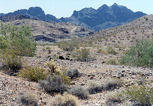 Lower Colorado River Valley - Image: View of Trigo Mountains Wilderness, AZ