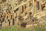 Villagedogon.jpg