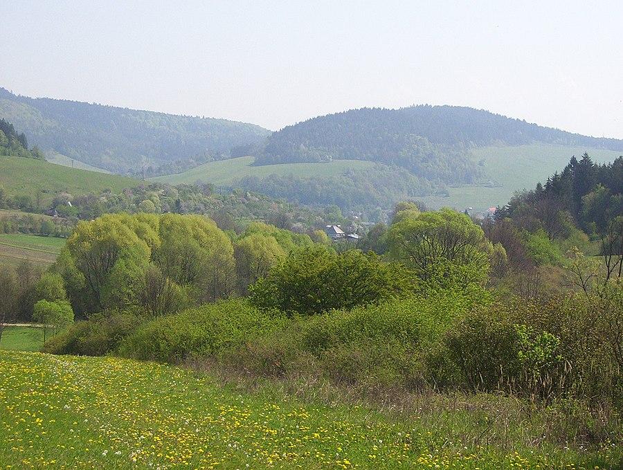 Jasenica (village)