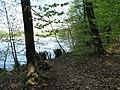 Vyžlovský rybník (028).jpg