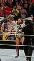 WWE 2014-04-07 19-11-05 NEX-6 0818 DxO (13952423445).jpg
