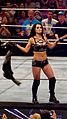 WWE Raw 2015-03-30 19-15-04 ILCE-6000 2754 DxO (18829748196).jpg