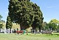 Waiau Cemetery.JPG