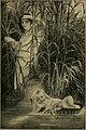Wandering heroes (1902) (14598215010).jpg