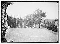 War cemetery consecration, Gaza-Belah, April 28, 1925 LOC matpc.08211.jpg