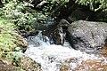 Water flow near Torfeno branishte.jpg