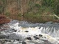 Water of Leith - geograph.org.uk - 680527.jpg