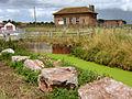 West Sedgemoor pumping station - geograph.org.uk - 1400051.jpg