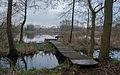 Westerbroek - steiger.jpg