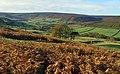 Westerdale valley - geograph.org.uk - 840430.jpg