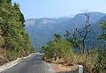 Western Ghats Vegetation - View en route Kottiyoor to Mananthavady15.jpg